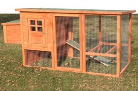 Poultry accesories